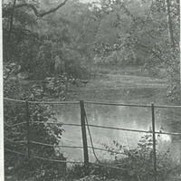 Lake in Ealing Park, 1880
